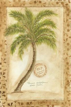 Phoenix Date Palm by Marianne D. Cuozzo