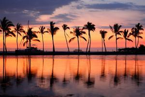 Paradise Beach Sunset or Sunrise with Tropical Palm Trees. Summer Travel Holidays Vacation Getaway by Maridav