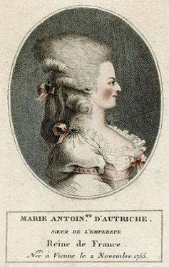 Marie Antoinette, Profile