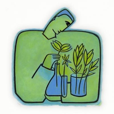 Growing Plants Experiments