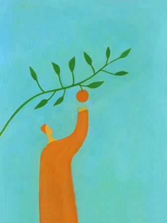 Man picking an orange