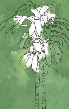 Dracaena on Green by Marie Lawyer