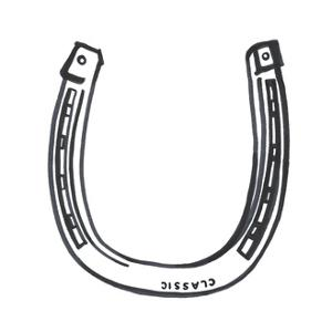 Lucky Horseshoe by Marie Lawyer