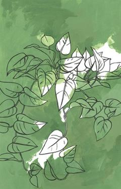 Pothos on Green by Marie Lawyer