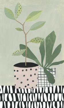 Table Plant 4 by Marie Lawyer