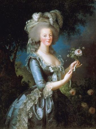 Marie Antoinette À La Rose, 1783 by Marie Louise Elisabeth Vigee-Lebrun