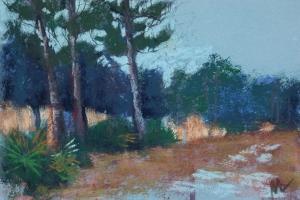 Lean to the Left, Julington Durbin Preserve Series by Marie Marfia Fine Art