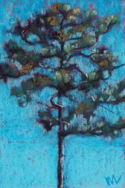 Tall Pine, Blue Sky, Julington Durbin Preserve Series by Marie Marfia Fine Art
