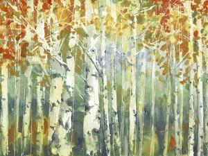 Abstract Birch Trees Warm by Marietta Cohen Art and Design