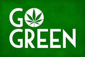 Marijuana Go Green College Print Plastic Sign