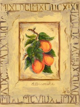 Italian Fruit Apricots by Marilyn Dunlap