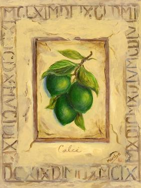 Italian Fruit Limes by Marilyn Dunlap