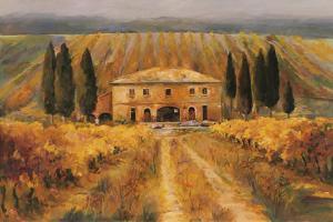 Toscana Vigna Special by Marilyn Hageman