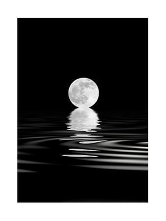 Rising Full Moon by marilyna