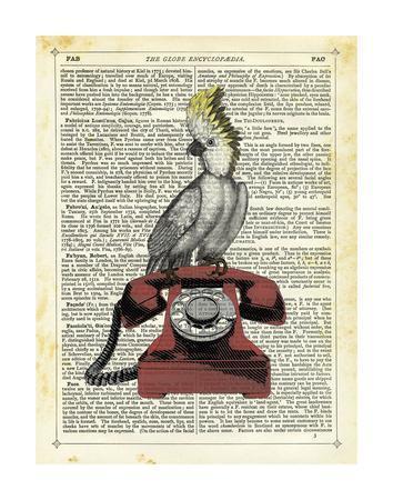 Cocatoo on Telephone
