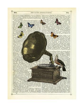 Gramophone, Bird & Butterflies