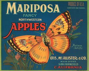 Mariposa Fancy Northwestern Apples