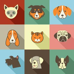 Pets Vector Icons - Cats and Dogs Elements by Marish