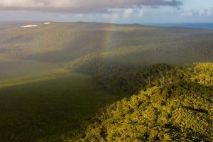 Aerial photograph of a rainbow & giant sand dunes, Great Sandy National Park, Australia by Mark A Johnson