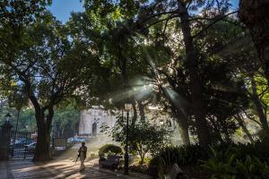 Jardim de Estrela, Lisbon, Portugal by Mark A Johnson
