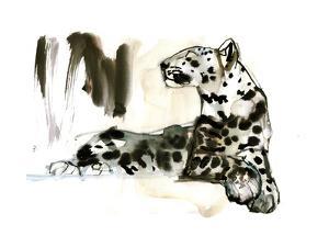 Arabian Leopard, 2008 by Mark Adlington
