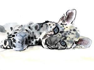 Arabian Leopard Cub, 2008 by Mark Adlington