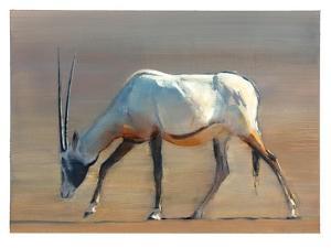 Arabian Oryx, 2010 by Mark Adlington