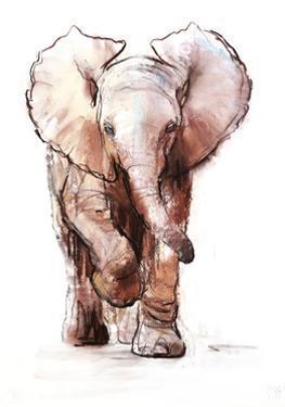 Baby Elephant Loisaba 2 by Mark Adlington