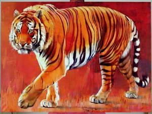 Bengal Tiger by Mark Adlington