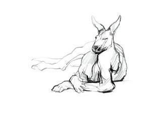 Resting Athlete (Red Kangaroo), 2012 by Mark Adlington
