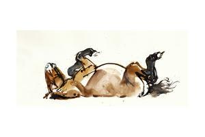 Rolling Horse (Przewalski), 2013 by Mark Adlington