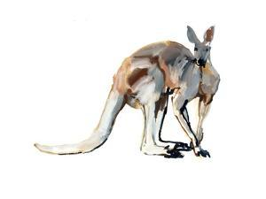 Roo, (Red Kangaroo), 2012 by Mark Adlington