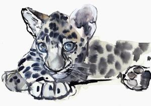 Spotty (Arabian Leopard Cub), 2008 by Mark Adlington