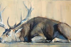 Stag, 2014 by Mark Adlington