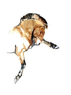 Stallion (Przewalski), 2013 by Mark Adlington