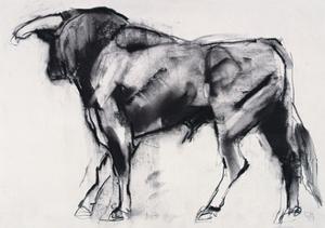 Toro Azul, Study by Mark Adlington