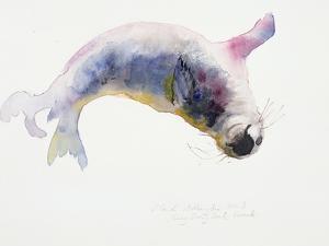 Young Grey Seal, Gweek, 2003 by Mark Adlington
