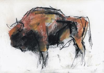 Zubre, Bialowieza by Mark Adlington