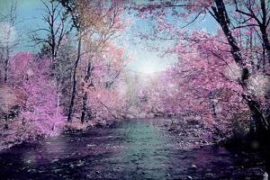Autumn by Mark Ashkenazi