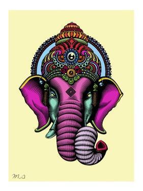 India by Mark Ashkenazi