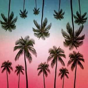 Tropical by Mark Ashkenazi