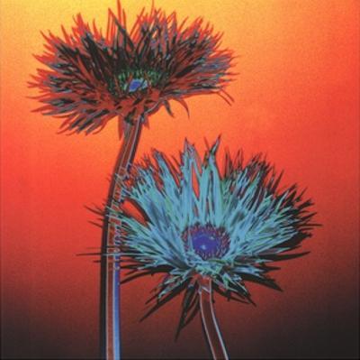 Acid Flowers No. 1