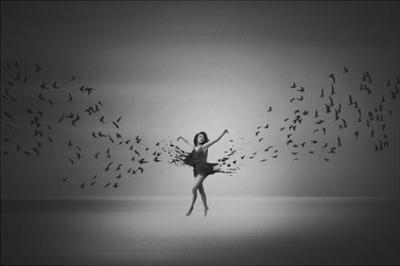 Ballerina Flight Of Birds by Mark Biwit