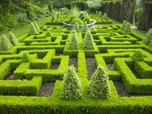 Knot Garden by Mark Bolton