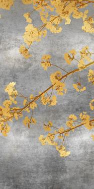 Cherry Blossom - Resplendent by Mark Chandon