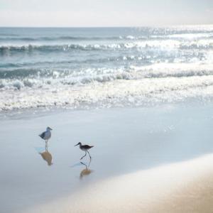 Coastal Retreat - Shores by Mark Chandon