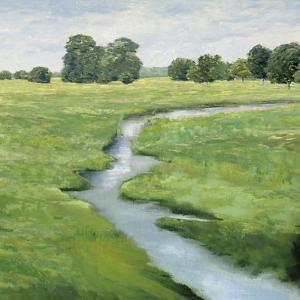 Country Meander - Stroll by Mark Chandon