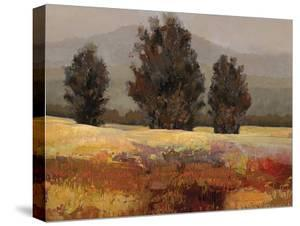 Country Reflection - Stroll by Mark Chandon