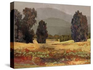 Country Reflection - Walk by Mark Chandon
