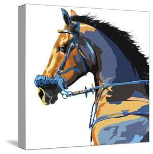 Equine Power - Pride by Mark Chandon